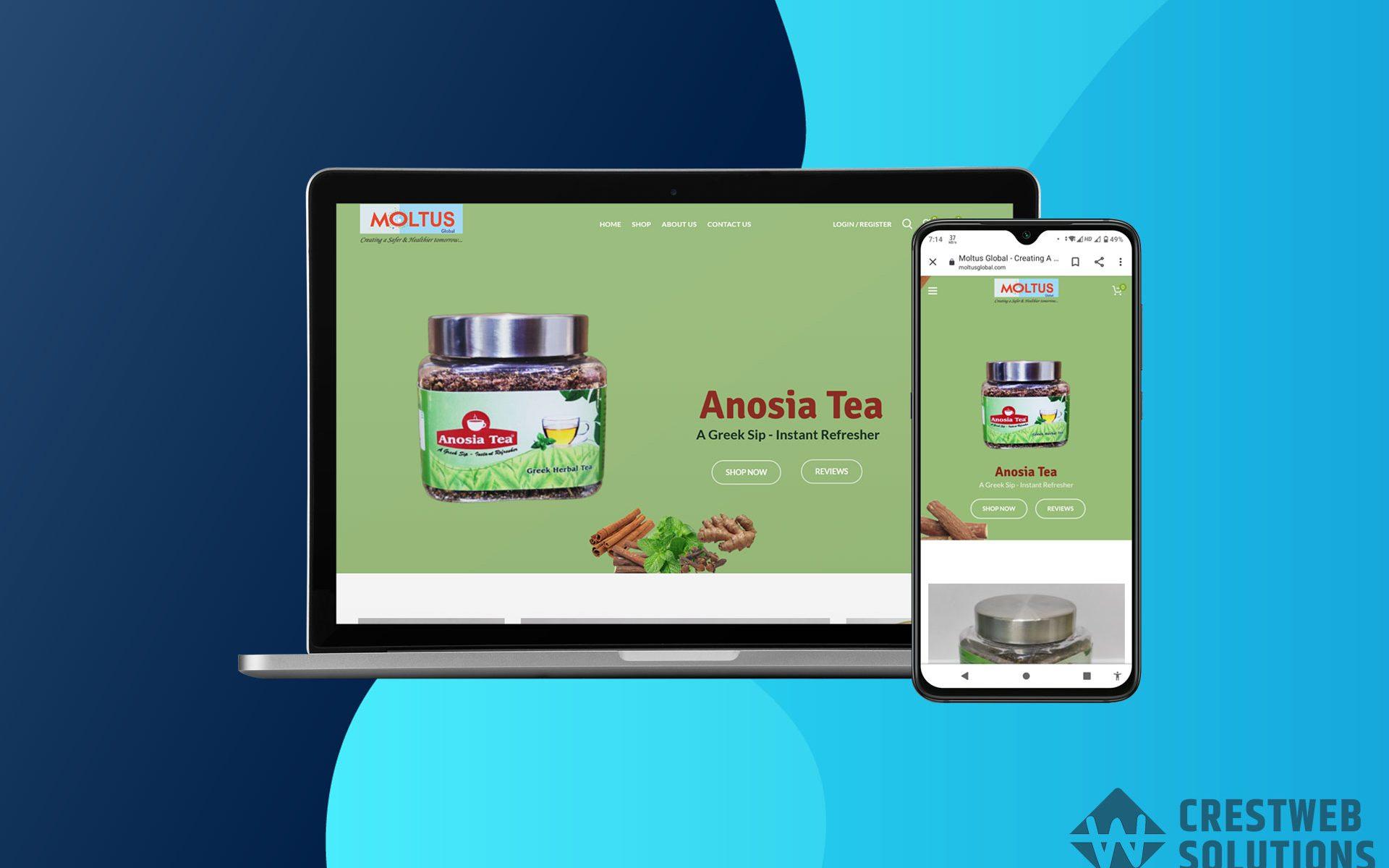 moltus global respionsive website in mumbai ecommerce crestweb solutions